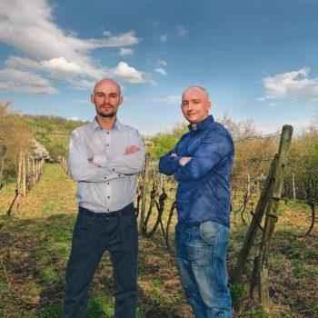 vinecka-vinarstvo-krizanovic-prievoznik
